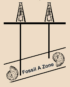 Correlation With Microfossils - Fossil A Zone